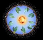 ReForest Now Logo Transparent