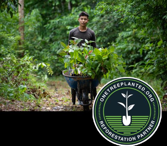 Reforestation Mobile