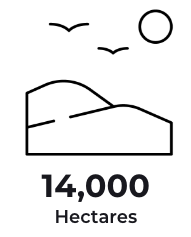 14K Hectares